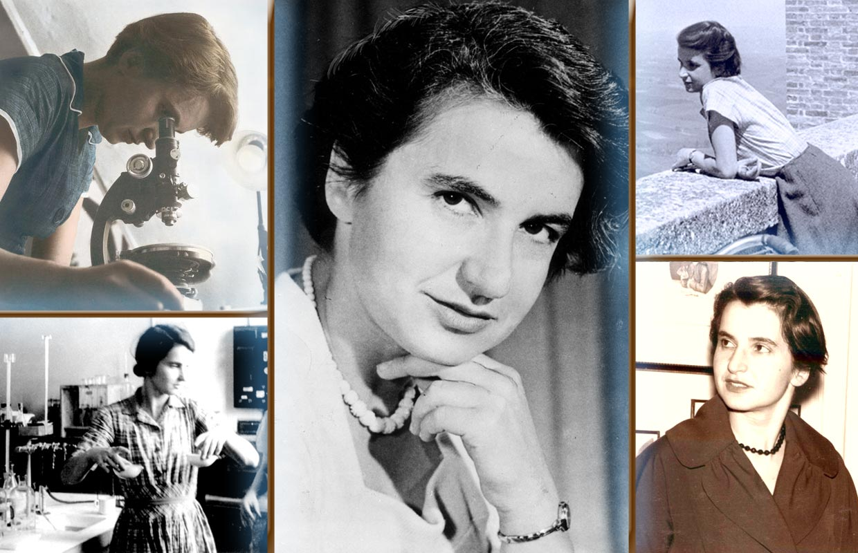 the life and contributions of rosalind elise franklin