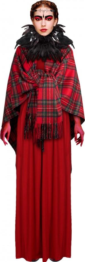 The Morrigan costume